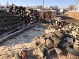 Brennholz durch atmosphärische und Kammertrocknung gehackt. - photo 5