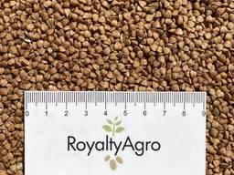 Сельхозпродукция из Республики Беларусь