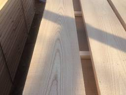 Sell boards Ash (Fraxinus)