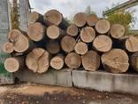 Unedged oak lumber - фото 3